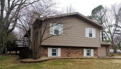 Photo of 200 Sherwood Drive, Glen Carbon, IL 62034-1040 (MLS # 19005326)