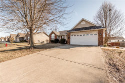 Photo of 14 Meadowbrooke Drive, Troy, IL 62294-2455 (MLS # 19005515)