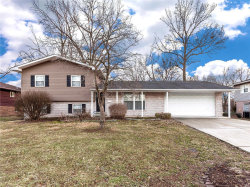 Photo of 313 Rosemary Drive, Collinsville, IL 62234-4842 (MLS # 19006301)