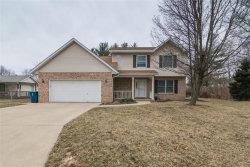 Photo of 1204 Briarwood Drive, Bethalto, IL 62010 (MLS # 19006435)