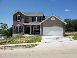 Photo of 17659 Rockwood Arbor Drive, Eureka, MO 63025 (MLS # 19007577)