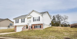 Photo of 7021 Brooks Farm Drive, House Springs, MO 63051-1480 (MLS # 19007748)