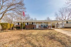 Photo of 4301 Martyridge, St Louis, MO 63129-3435 (MLS # 19008804)