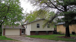 Photo of 13 Steven Brent Court, St Peters, MO 63376-6558 (MLS # 19009166)