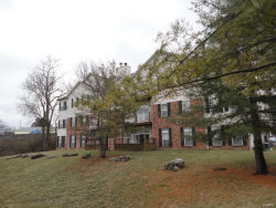 Photo of 1287 Gardens Circle , Unit 3D, St Louis, MO 63125-3534 (MLS # 19009326)