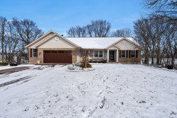 Photo of 140 Bluffview Drive, Troy, MO 63379 (MLS # 19009423)