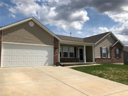 Photo of 255 Rockport Drive, Troy, MO 63379-3568 (MLS # 19013372)