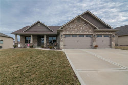 Photo of 141 Stonebridge Bluff Drive, Maryville, IL 62062-6494 (MLS # 19014012)