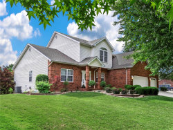 Photo of 29 Deer Trail, Collinsville, IL 62234-6866 (MLS # 19017143)