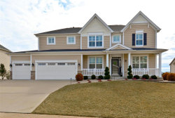 Photo of 206 Northern Pines Court, St Peters, MO 63376-4386 (MLS # 19017839)