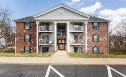 Photo of 7421 Triwoods Drive , Unit K, St Louis, MO 63119-4462 (MLS # 19018405)