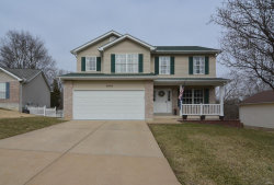 Photo of 9840 Sand Castle, Pevely, MO 63070-2613 (MLS # 19019244)