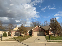 Photo of 327 Jarvis Court, Troy, IL 62294-1155 (MLS # 19019271)