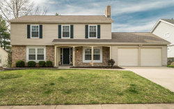 Photo of 15562 Parasol, Chesterfield, MO 63017-7462 (MLS # 19019349)