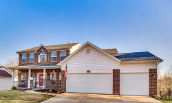 Photo of 552 Hickory Manor Drive, Arnold, MO 63010-2797 (MLS # 19020141)