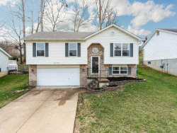 Photo of 2208 Sonora, Arnold, MO 63010-5219 (MLS # 19021645)