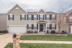 Photo of 2952 Glaize Creek Drive, Imperial, MO 63052-4137 (MLS # 19022132)
