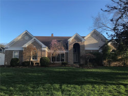 Photo of 742 Kraffel Lane, Town and Country, MO 63017-8057 (MLS # 19024637)
