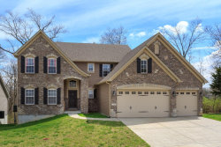 Photo of 1330 Spring Lilly Drive, High Ridge, MO 63049-1184 (MLS # 19024884)