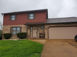 Photo of 824 Andra, Maryville, IL 62062-5741 (MLS # 19025607)