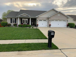 Photo of 9 Claybrooke Court, Troy, IL 62294 (MLS # 19026192)