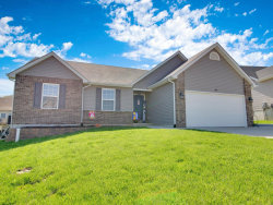 Photo of 420 Amber Lake Court, Imperial, MO 63052 (MLS # 19027654)