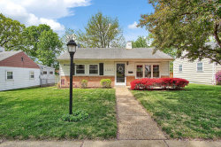 Photo of 3927 Wenzlick Avenue, St Louis, MO 63109-1255 (MLS # 19029201)