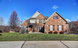 Photo of 12563 Grandview Forest Drive, St Louis, MO 63127-0045 (MLS # 19029205)