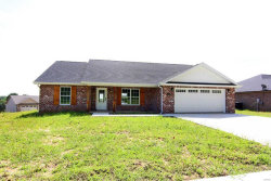 Photo of 722 Old Mill Dr, Cape Girardeau, MO 63701 (MLS # 19032210)