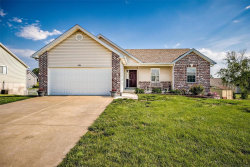 Photo of 235 Meadow Crest, Troy, MO 63379-7211 (MLS # 19037101)