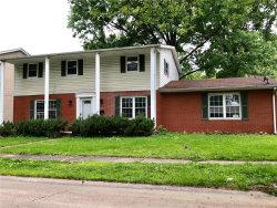 Photo of 3327 Princeton Drive, Granite City, IL 62040 (MLS # 19037565)
