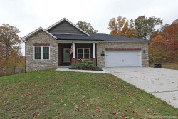 Photo of 2450 Benton Hill Road, Cape Girardeau, MO 63701-8477 (MLS # 19037622)