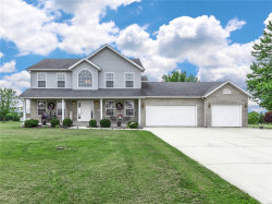 Photo of 949 Country Pointe, Marine, IL 62061-1772 (MLS # 19039565)