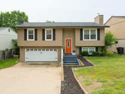 Photo of 3830 Birch Drive, Imperial, MO 63052-1177 (MLS # 19040118)