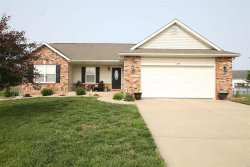 Photo of 100 Shadowbrooke, Troy, IL 62294-3620 (MLS # 19041319)