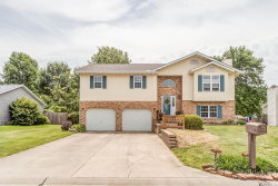 Photo of 913 Rolling Madows Drive, Maryville, IL 62062-6206 (MLS # 19044352)