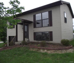 Photo of 1044 Hackberry, Troy, MO 63379-3217 (MLS # 19044756)