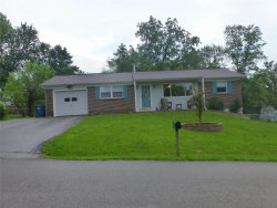Photo of 124 Valley, Hillsboro, MO 63050-5073 (MLS # 19045159)