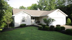 Photo of 5850 Parkview Dr, Hillsboro, MO 63050-3367 (MLS # 19047173)