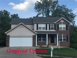 Photo of 2412 Little Round Top Drive, Edwardsville, IL 62025-6202 (MLS # 19050258)