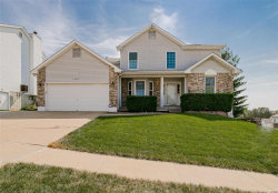 Photo of 1703 Trinity Circle, Arnold, MO 63010-2652 (MLS # 19050342)
