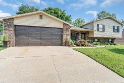 Photo of 3822 Valley View Lane, Cape Girardeau, MO 63701 (MLS # 19050621)