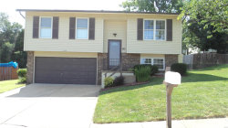 Photo of 3236 Lupine Dr, Arnold, MO 63010 (MLS # 19056971)