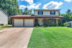 Photo of 112 Meadow Lane North, Columbia, IL 62236-1009 (MLS # 19058225)