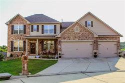Photo of 2013 Pullman Drive, Festus, MO 63028-3156 (MLS # 19058885)