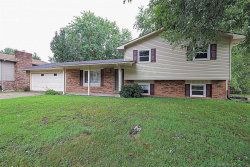 Photo of 3109 Wisteria Street, Cape Girardeau, MO 63701-4121 (MLS # 19059475)