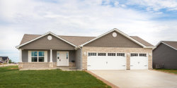 Photo of 201 Bayview Drive, Troy, MO 63379 (MLS # 19059792)
