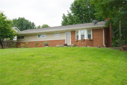 Photo of 621 West Country Lane, Collinsville, IL 62234 (MLS # 19060134)