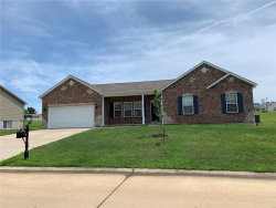 Photo of 323 Rockport Drive, Troy, MO 63379-3500 (MLS # 19060570)