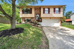 Photo of 4903 Windemere, Imperial, MO 63052-1459 (MLS # 19060741)